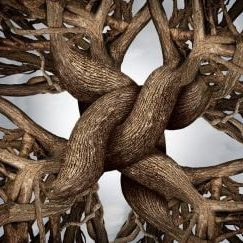 Unity symbol as an eternal knot of trust made from the roots and trunks of growing trees as a community or business friendship concept for the power of teamwork and solidarity working together for solid success and growth.